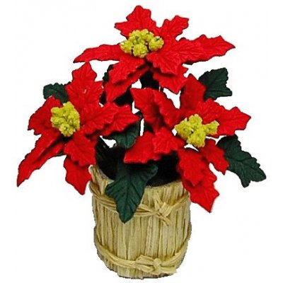Poinsettia in Country Planter