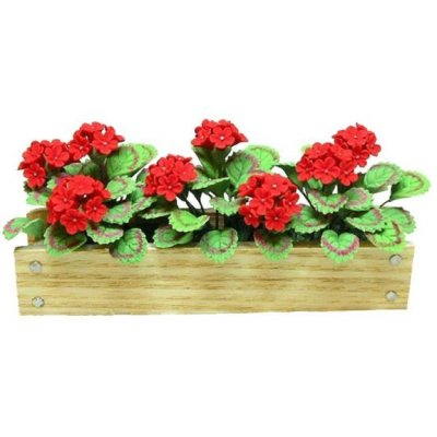 Red Geraniums in Window Box