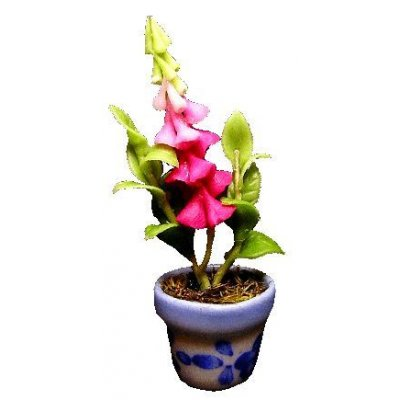 Pink Bell Flowers in Blue Pot
