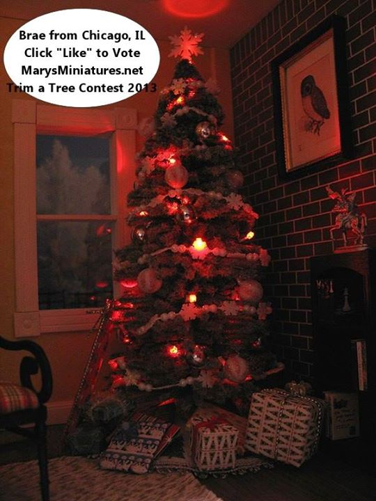 2013 Trim a Tree Contest Winner Brae, from Chicago, IL.