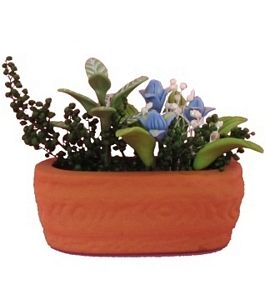 Assorted Flowers in Clay Pot