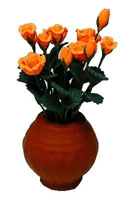Ceramic Vase / 12 Apricot Roses (Flowers are Loose)