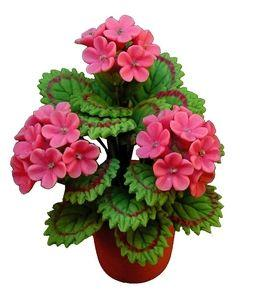 Pink Geraniums in a Clay Pot